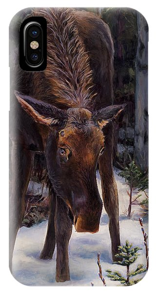 Young Moose And Snowy Forest Springtime In Alaska Wildlife Home Decor Painting IPhone Case