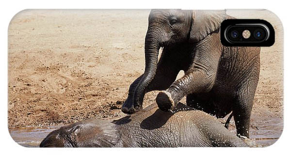 IPhone Case featuring the photograph Young Playful African Elephants by Nick Biemans