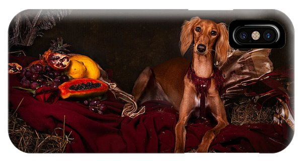 Young Saluki Dog With Fruits IPhone Case