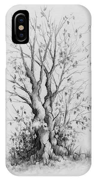 Young Tree IPhone Case