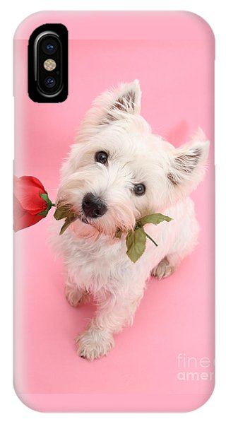 Your Valentine Every Day IPhone Case