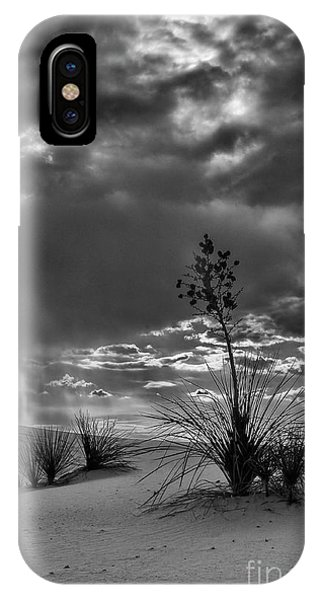 Yucca At Sunset IPhone Case