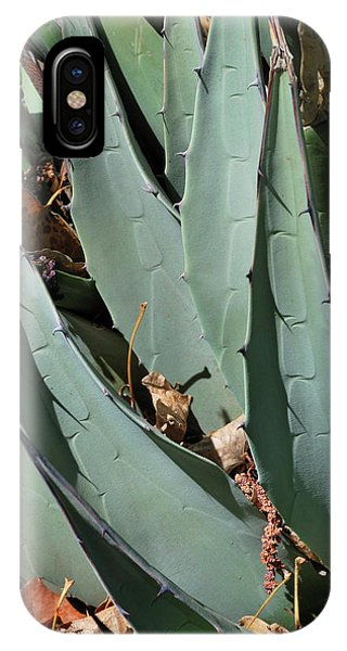 Yucca Leaves IPhone Case