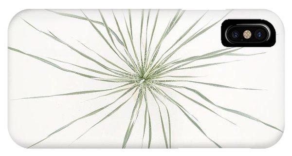 Yucca Whorl IPhone Case