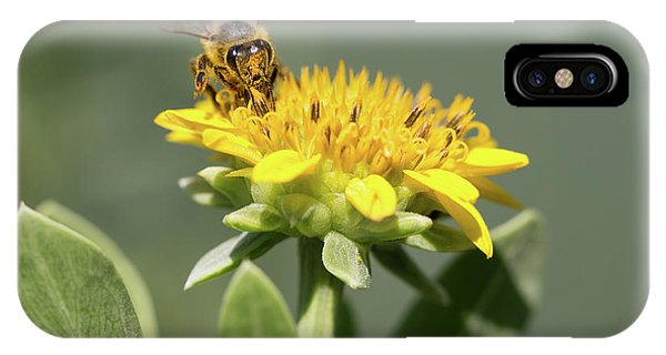 Yumm Pollen IPhone Case