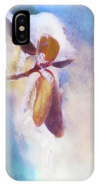 Winter Abstract - Snow And Ice On Rhododendron Leaves IPhone Case