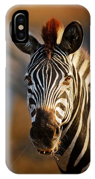 Head And Shoulders iPhone Case - Zebra Close-up Portrait by Johan Swanepoel