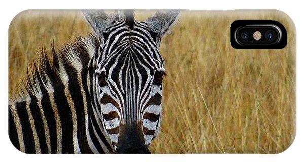 Exploramum iPhone Case - Zebra Half Shot Face On by Exploramum Exploramum