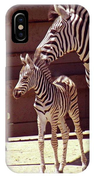 Zebra Mom And Baby IPhone Case