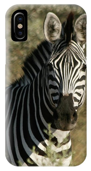 IPhone Case featuring the photograph Zebra Portrait by Karen Zuk Rosenblatt