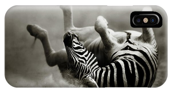 Dust iPhone Case - Zebra Rolling by Johan Swanepoel
