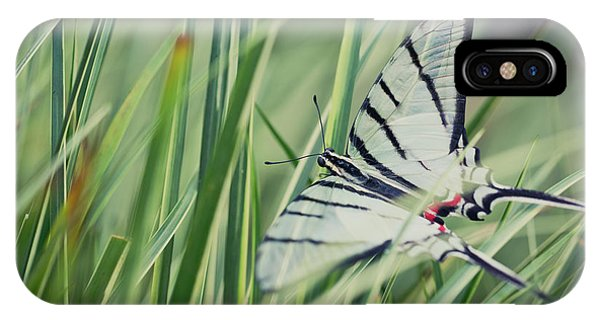 Zebra Swallowtail IPhone Case