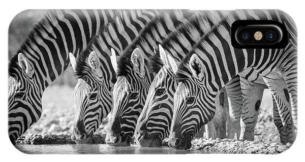 Zebra iPhone Case - Zebras Drinking by Inge Johnsson