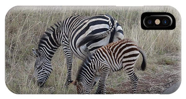Zebras In Kenya 1 IPhone Case
