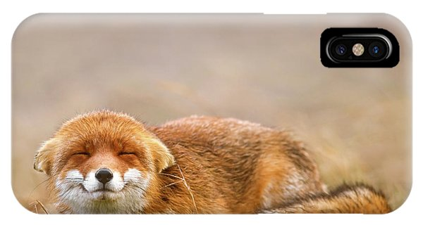 Zen Fox Series - Smiling Fox Is Smiling IPhone Case
