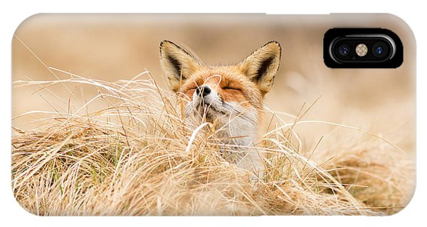 Zen Fox Series - Zen Fox 2.7 IPhone Case