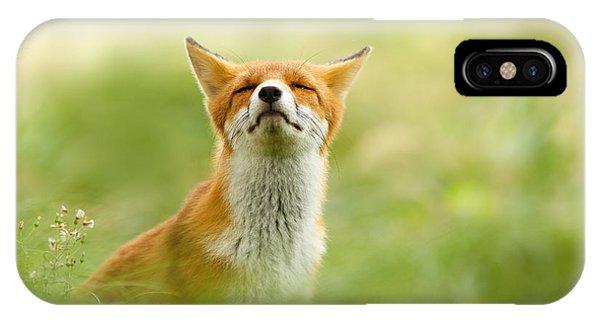 Zen Fox Series - Zen Fox Does It Agian IPhone Case