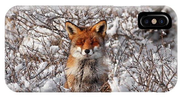 Zen Fox Series - Zen Fox In The Snow IPhone Case
