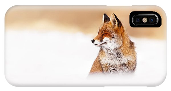 Winter iPhone Case - Zen Fox Series - Zen Fox In Winter Mood by Roeselien Raimond