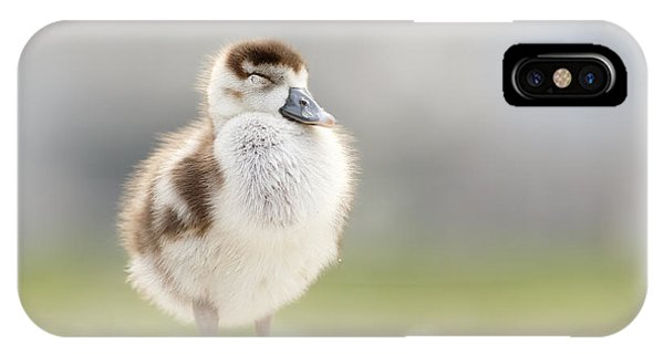 Goslings iPhone Case - Zen Gosling by Roeselien Raimond