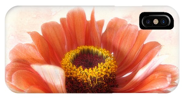 Zinnia Bright IPhone Case