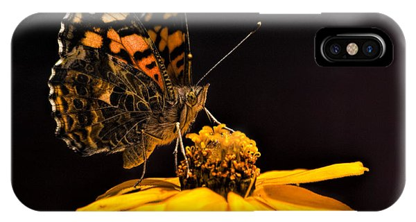 Zinnia Sipping IPhone Case