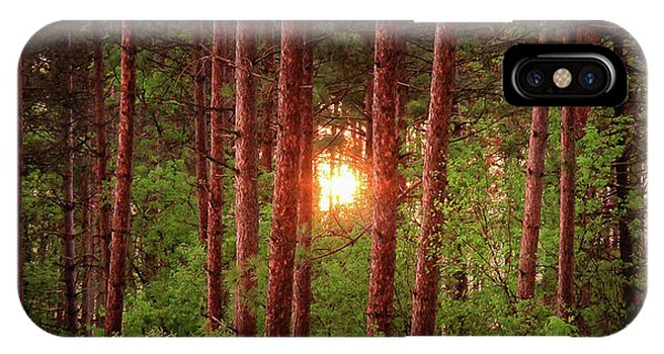 010 - Pine Sunset IPhone Case
