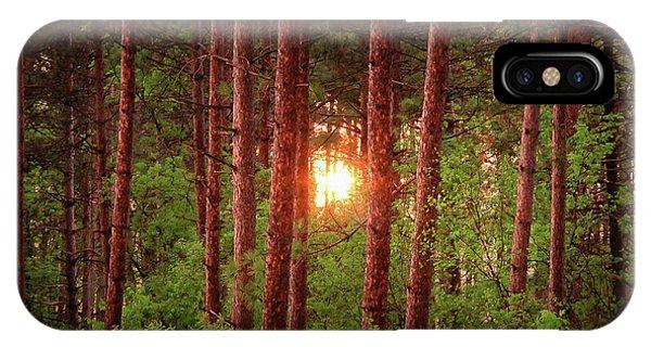 010 - Pine Sunset IPhone Case