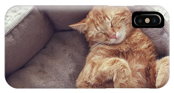 A Ginger Cat Sleeps In His Soft Cozy Phone Case by Alena Ozerova