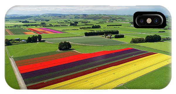 Aerial Of Colorful Tulip Fields Phone Case by David Wall