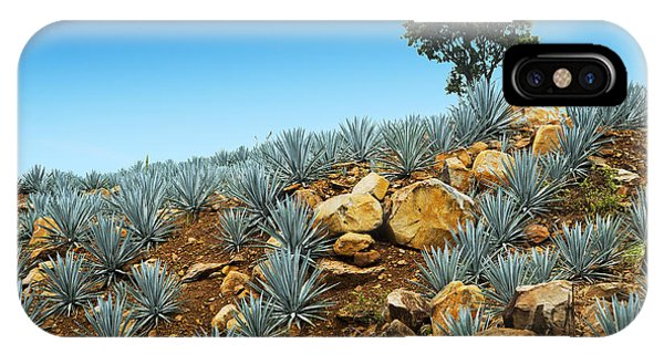 Cutting iPhone Case - Agave Tequila Landscape To Guadalajara by Jesus Cervantes
