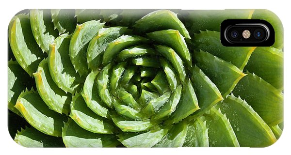 Aloe_polyphylla_8536.psd IPhone Case