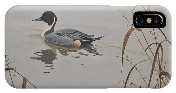 Ankeny Pintail IPhone Case