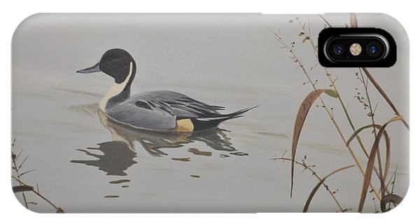 IPhone Case featuring the painting Ankeny Pintail by Peter Mathios