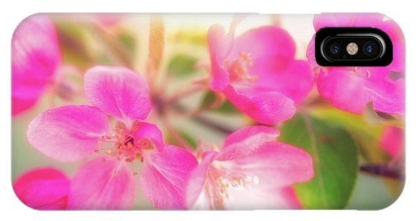 IPhone Case featuring the photograph Apple Blossom 6 by Leland D Howard