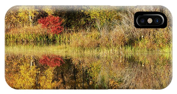 Illusion iPhone Case - Autumn Illusion by Mike Dawson