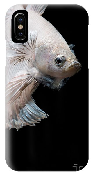 Fins iPhone Case - Betta Fish,siamese Fighting Fish In by Nuamfolio