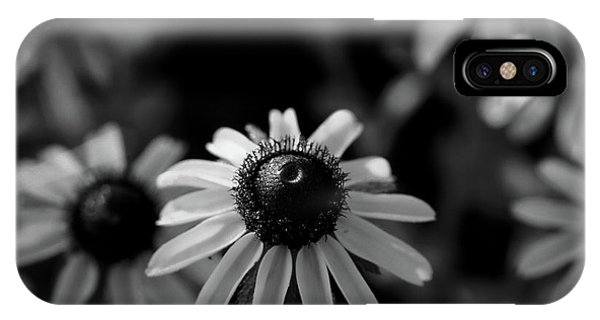 IPhone Case featuring the photograph Black-eyed Susan  by Jeff Phillippi