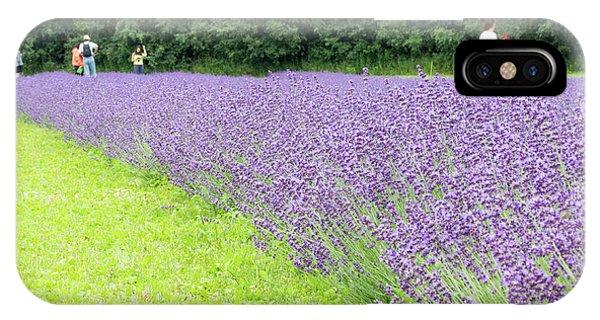 Blue Lavender IPhone Case