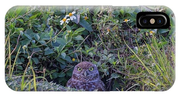 IPhone Case featuring the photograph Burrowing Owl by Paul Schultz