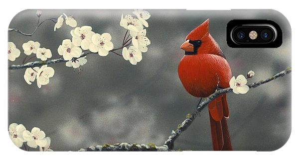 Cardinal And Blossoms IPhone Case