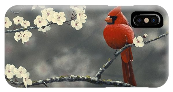 IPhone Case featuring the painting Cardinal And Blossoms by Peter Mathios