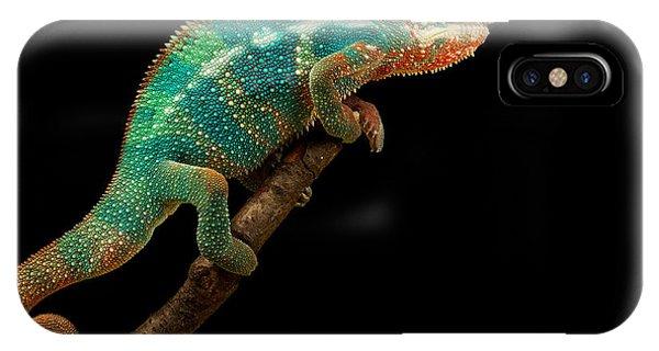 Cutout iPhone Case - Chameleon by Mark Bridger