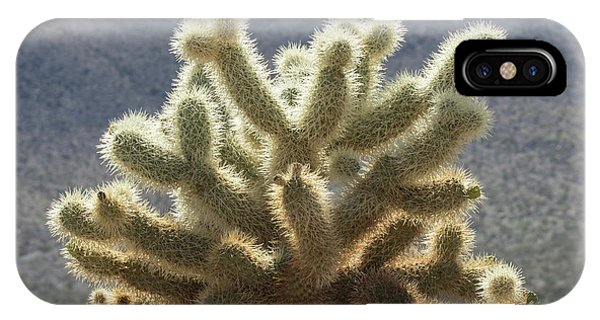 Opuntia Bigelovii iPhone X Case - Cholla Cactus by Jurgen Lorenzen