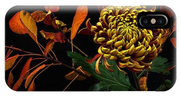 Blossom iPhone Case - Close-up Of Autumn Dahlia Flower. Macro by Veroja