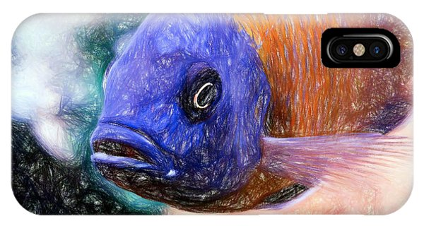 Colored Pencil Red Fin Borleyi Cichlid IPhone Case