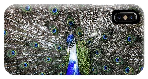 Dancing Peacock IPhone Case
