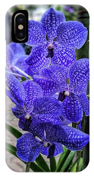 Deep Purple Orchid IPhone Case