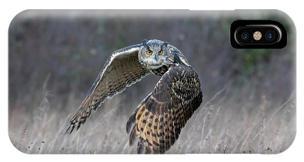 Eurasian Eagle Owl Flying IPhone Case