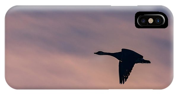 IPhone Case featuring the photograph Evening Flight by Allin Sorenson
